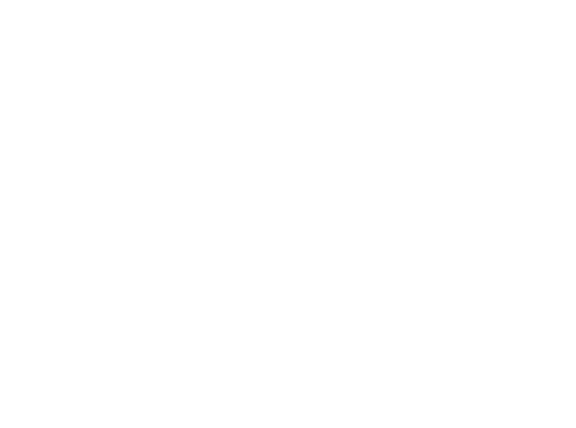 Swerve Customs logo
